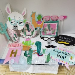 Llama Party Set
