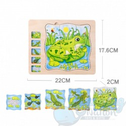 Multi Layered Frog Puzzle
