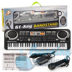 61 Keys Electric Organ