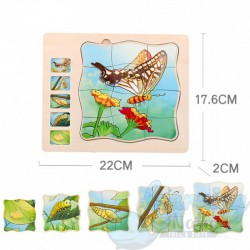 Multi Layered Moth Puzzle