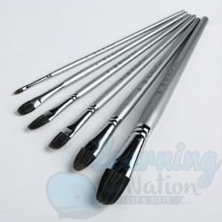 Premium 6 Paint Brushes Set